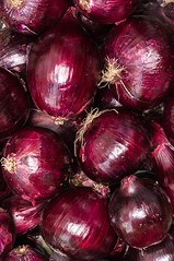 Big Red Onions Background (svetoslavradkov) Tags: onion red background vegetable organic eating food fresh healthy ingredient natural raw purple plant brown bulb close cuisine culinary grocery many root spice crop garlic produce harvest market storage allium aroma big chopped chutney common cultivars cultivation fruit growing kitchen local pickles sepa skins srilanka stall top view vegetarian agriculture