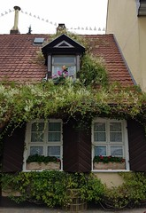 Fairy-tale house (:Linda:) Tags: germany bavaria franconia town erlangen dormer roof volute flowerbox climber window three whiteblossom geranium whiteflower