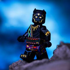 T'Chaka (Jezbags) Tags: original black panther tchaka blackpanther marvel marvelstudios lego legos toy toys canon canon80d 80d 100mm closeup upclose macro macrophotography macrodreams macrolego