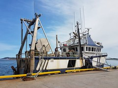 Day 5 - Large fishing trawler from St Stephen, Newfoundland docked on Grande Entree Island (Bobcatnorth) Tags: lesilesdelamadeleine magdalenislands quebec canada summer 2018 cycling velo bicycle bicycling cycletouring bicycletouring touring tourdevelo gulfofstlawrence