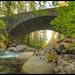 Bridge Cougar Creek