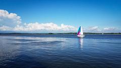 Colorful sails (hickamorehackamore) Tags: ct connecticut river ctriver connecticutriver saybrook oldsaybrook saybrookpoint sailboat sails