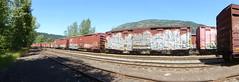 Rail yard. (arrowlakelass) Tags: cpr railyard rail freight castlegar canada bc boxcars p1020848