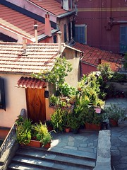 Little terrace garden in Imperia (marionvankempen) Tags: atmosphere italy garden throughherlens