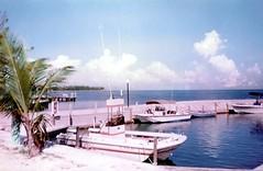 Image (7) (TryKey) Tags: 1990s 1990 1991 florida keys trykey boat larsen larson gamefish game fish resort coral bay coralbay dock pier islamorada coconut tree gulf isla