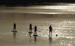 Paddle Boarders - River Adur (43) (Malcolm Bull) Tags: include river adur golden light shoreham stand up paddle boader sup 20180806shoreham0043edited1web
