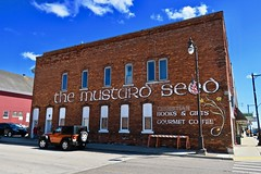 The Mustard Seed, Manistique, MI (Robby Virus) Tags: manistique michigan mi up upper peninsula mustard seed painted sign signage ad advertisement brick wall building architecture