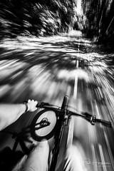 Catching up speed (PaulHoo) Tags: nikon d750 samyang 14mm wideangle ultrawideangle bicycle cycling shadow mtb mountainbike activelife health healthy exercise 2018 amsterdam forest amsterdamse bos