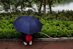 Hanoi, Vietnam (jaumescar) Tags: hidden umbrella hanoi hànội vietnam park green streetphotography outdoor woman mistery crouched down rain
