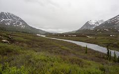 Tangle Lakes-11 (qwertyomen) Tags: tangle lakes delta river stream mountains mountain flowers tundra alaskarange alaska