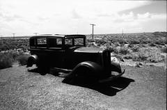 Petrified Forest, AZ (cestlameremichel) Tags: bnw black white monochrome monochromatic argentique 35mm analog minolta konica dynax 40 rollei retro 80s usa roadtrip west america filmisnotdead analogue analogica contrast