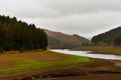 Howden Reservoir (mmmtog) Tags: reservoir water land trees sky cloud green brown summer