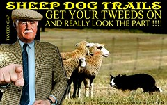 Sheep dogs Trails 4 (The General Was Here !!!) Tags: sheep shepard dog border collie farmer trails tweed jacket cap plaid scottish country farming show mens tweedjacket tweedcap retro vintage nz kiwi newzealand tie houndstooth sheepdogtrails yorkshire manwearingtweedjacket manwearingtweedcap cheesecutter livestock grass outdoor poster sign ap crook countryside oldman man gent suit agricultral dogs old oldschool gentleman fashion animal