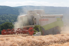 Claas Lexion 460 Combine Harvester cutting Winter Barley (Shane Casey CK25) Tags: claas lexion 460 combine harvester cutting winter barley grain harvest grain2018 grain18 harvest2018 harvest18 corn2018 corn crop tillage crops cereal cereals golden straw dust chaff county cork ireland irish farm farmer farming agri agriculture contractor field ground soil earth work working horse power horsepower hp pull pulling cut knife blade blades machine machinery collect collecting mähdrescher cosechadora moissonneusebatteuse kombajny zbożowe kombajn maaidorser mietitrebbia nikon d7200
