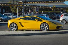 Lamborghini Gallardo 1209 (_Rjc9666_) Tags: auto eiiiott faroairport lamborghini lamborghinigallardo nikond5100 supercar tamron2470f28 yellow faro portugal pt ©ruijorge9666 car 2186 1209