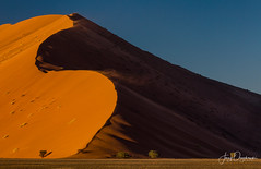 Windy dune (Jerzy Orzechowski) Tags: dune wind sossusvlei trees abstract moment sunset sky orange shadows namibia grass moody canon