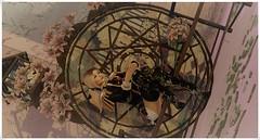 minamikaze180706-2 (minamikaze2010) Tags: oleander summerfest18 izzies lookbook applier cureless thecrystalheartfestival drd uniform alaskametro cmyk boildegg japonica {anc} fantasy