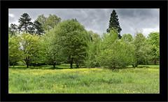 Le vert est beau... (Jean-Louis DUMAS) Tags: nature paysage landscape landscapes dreams vert green arbre tree ciel sky cloud nuage pelouse champ forêt route parc bois prairie