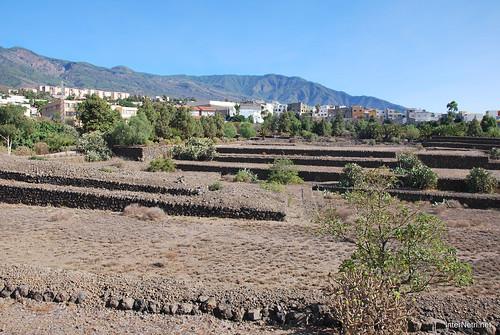Піраміди в Гуїмар, Тенеріфе, Канари  InterNetri  018