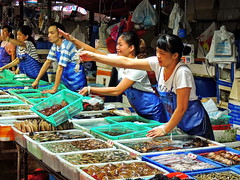 Seafood market (markb120) Tags: market mart emporium rialto fish sea food seafood dealer trader vendor tradesman seller trafficker woman female she wife oldwoman feminine
