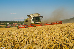 CTF Wheat Harvest 2018 (martin_king.photo) Tags: harvest harvest2018 ernte 2018harvestseason ctfharvest controllentrafficfarming ctf wheat grain combineharvester combine harvester new modernmachine summerwork powerfull martin king photo machines strong agricultural great czechrepublic agriculturalmachinery farm working modernagriculture landwirtschaft martinkingphoto moisson machine machinery field huge big sky agriculture power dynastyphotography lukaskralphotocz day fans work place yellow gold golden eos country lens rural camera outdoors outdoor goldenhour colours landscape fields lines controlledtrafficfarming claas claaslexion horsch horschtitan johndeere johndeere8rt goldenfields