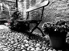 *** (Eggii) Tags: isoladisangiulio flowers bench monochrome bw mono