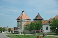 imgp9946 (Mr. Pi) Tags: animals village birds church nest fortress romania cata cața