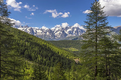 Valle d'Aosta (Fil.ippo (away...)) Tags: valledaosta valdaosta aostavalley montblanc montebianco landscape paesaggio panorama boschi wood forest sky clouds filippo filippobianchi nikon d610 tree albero lathuile