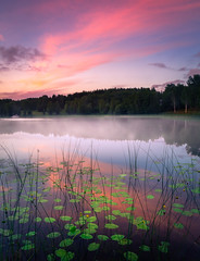 Tranquility (andreassofus) Tags: nature landscape water lake reflection mirror sunset clouds sky color colorful mist fog foggy misty sweden summer summertime outdoor nopeople värmland töcksfors canon manfrotto
