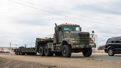 Freightliner M916 LET (Light Equipment Transport) (NoVa Truck & Transport Photos) Tags: freightliner m916 let light equipment transport 411 engineer brigade 463 battalion 299 company fort belvoir us army
