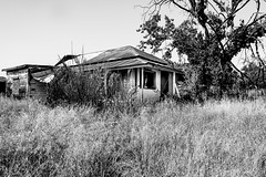 Woods Crossing, Tuolumne County, California (paccode) Tags: solemn d850 landscape bushes brush serious quiet tireswing california abandoned monochrome forgotten farm tree blackwhite creepy scary jamestown unitedstates us