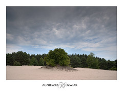 Atomic bomb. (smoothna) Tags: nature nadwarciańskiparkkrajobrazowy wartalandscapepark dune smoothna d90 landscape clouds