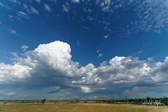 Evening Clouds (Explored) (dcstep) Tags: dsc6901dxo fe1224mmf4g clouds sky blue sonya9 cherrycreekstatepark colorado usa aurora allrightsreserved copyright2018davidcstephens dxophotolab nature urban urbannature explore explored