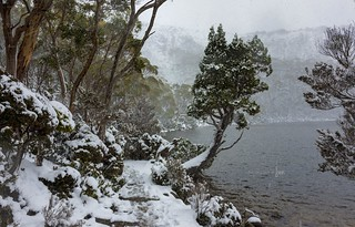 Lake Dobson, Mt Field National Park.