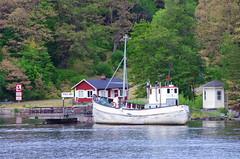 153 Stockholm Juin 2018 (paspog) Tags: stockholm suède sweden schwsden mer see sea bateau boat schiff maison house haus juni juin june 2018