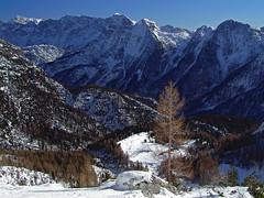 Grantagar alpine meadow (Vid Pogacnik) Tags: italy italia slovenija slovenia julianalps outdoors landscape skitouring tourskiing mountain winter alpinemeadow grantagar viškaplanina panorama