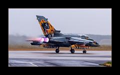 Hot Tiger (richieb56) Tags: luftfahrt aviation military air force luftwaffe ag51 immelmann jagel tiger afterburner nachbrenner rain regen runway heat hitze startbahn germany deutschland airbase association