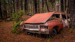 Even The Losers (Wayne Stadler Photography) Tags: abandoned preserved junkyard georgia classic automotive derelict overgrown vehiclesrust rusty retro vintage oldcarcity rustographer rustography white