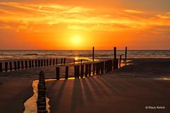 Golden light 15051801 (Klaus Kehrls) Tags: sunset cadzandbad niederlande nordsee strand sonnenuntergang abend idylle abendstimmung lichtundschatten