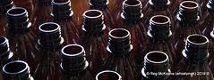 03-IMG_0190 - Sterilised Bottles (whiskymac) Tags: homebrew beer ale