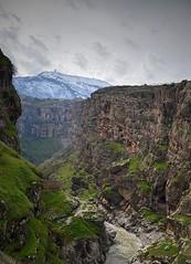 KURDISTAN (Kurdistan Photo كوردستان) Tags: الله العظيم kurdistan کوردستان land democratic party koerdistan kurdistani kurdistán kurdistanê zagros zoregva zazaki zaxo zindî azadî azmar xebat xaneqînê christianity cegerxwin van love mahabad music arbil democracy freedom genocide herêmakurdistanê hawler hewler hewlêr halabja herêma judaism jerusalem kurdistan4all lalish qamishli qamislo qamishlî qasimlo war erbil efrînê refugee revolution rojava referendum yezidism yazidis yârsânism unhcr peshmerga peshmerge كوردستاني portrait tree sky grass landscape mountain rock mount hdp mountainside river water