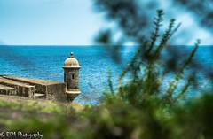 La Garita y el Mar. (E S M Photography) Tags: sanjuan puertorico sony alpha a58 sony55300samlens sea historic history castillo summer travel