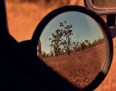 Hindsight (MrMojoRisin43) Tags: mirror outback australia cairns mitchell river grass nature