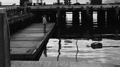 DSC06948 (A Common Courtesy) Tags: a common courtesy wellington auckland new zealand camera photo bw color black white day night monochrome bokeh sony nex 5a nex5a focuspeaking minolta mc pg 50mm 14rokkor fotodiox adapter