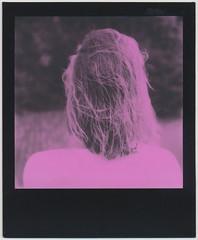 (PALEXX) Tags: polaroidlandcamera polaroidslr680 slr680 instantfilm polaroidoriginals pink asa600 duochromeedition