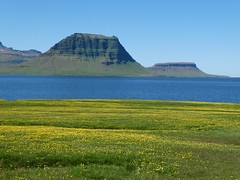 Kirkjufell (misiekmintus) Tags: kirkjufell iceland snaefelsness