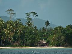 DSC_0009 (yakovina) Tags: papuanewguinea alotau silversiaexpeditions