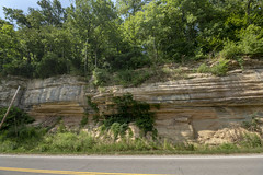 Fort Payne formation, Pegram formation, Sw, US Hwy 70, Davidson County, Tennessee (Chuck Sutherland) Tags: fortpayneformation pegramformation sw ushwy70 davidsoncounty tennessee tn rock bedrock outcrop bluff cliff rockcut roadcut exposure fortpayne chert limestone