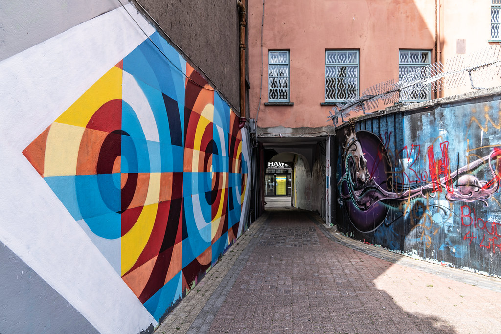 EXAMPLES OF STREET ART [URBAN CULTURE IN WATERFORD CITY]-142296