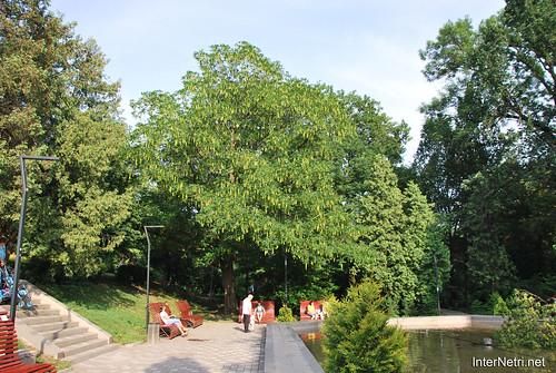 Київ, Ботанічний сад імені Фоміна Ukraine InterNetri 21